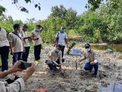 Cegah Abrasi, KPw BI Provinsi Lampung Bersama 20 Wartawan Tanam Mangrove di Pantai Lampung Selatan